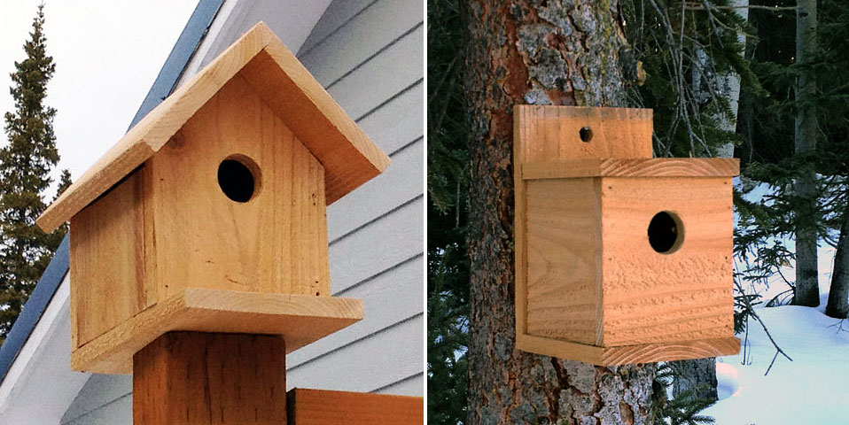 Free DIY Birdhouse Plans
