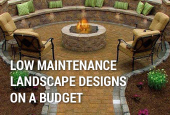Low Maintenance Landscape Designs on a Budget